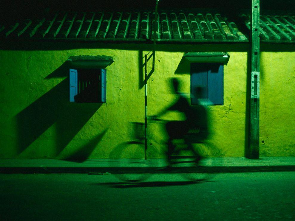 Зеленый цвет жизни (6)