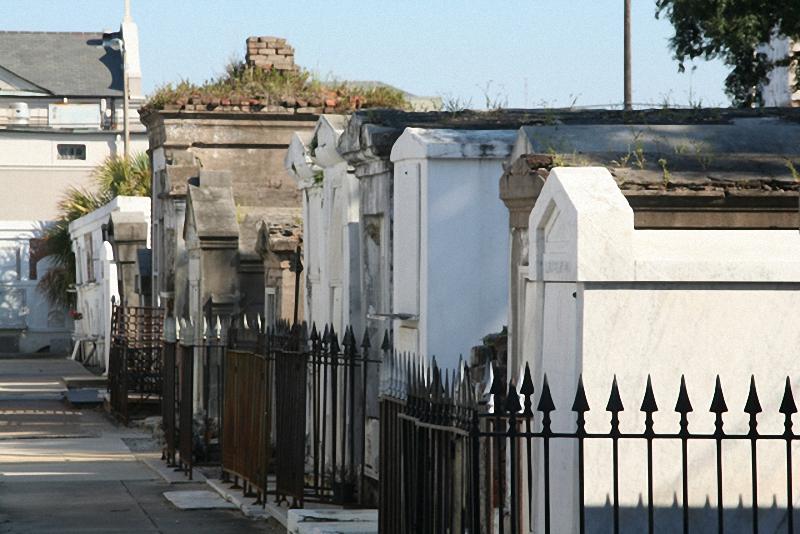 Необычные экскурсии по кладбищам (38)