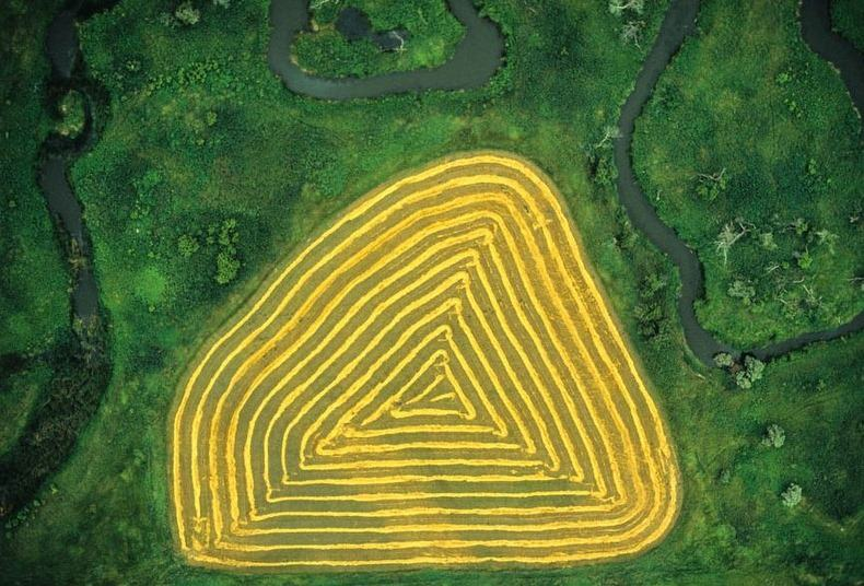 Воздушные фотографии сельскохозяйственных угодий (16)
