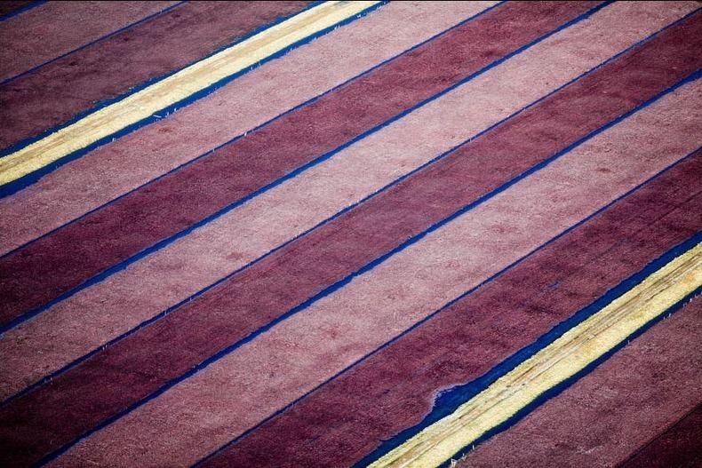 Воздушные фотографии сельскохозяйственных угодий (7)