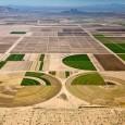 Воздушные фотографии сельскохозяйственных угодий (4)
