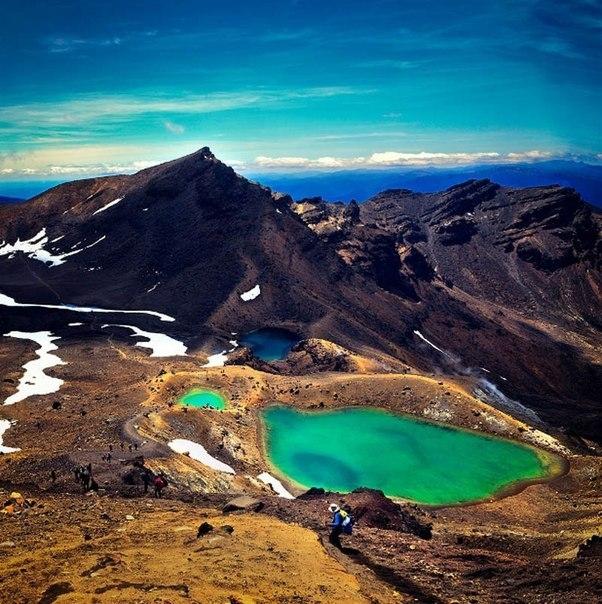 Новая Зеландия - фото чудес природы
